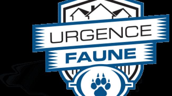 Urgence faune
